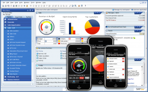 Accounts software for small businesses